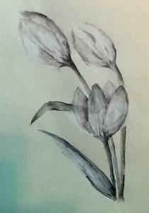 Renate Neocolor auf Ingres-Papier 2015-06-16
