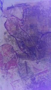 IMAG6023