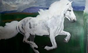 Bild Maria weißes Pferd Anfängerbild