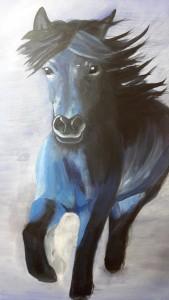 Eva Augen Pferd