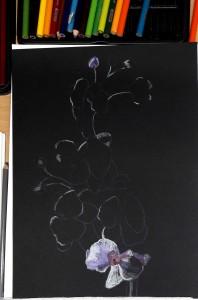 2018-03-20 Doris Beginn Blumen auf Schwarz