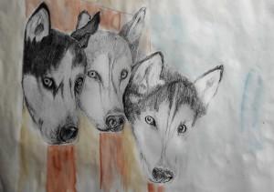 2018-05-22 Huskies Marianne fast fertig